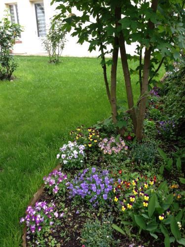 Les Gites Douillets de Sancerre : Guest accommodation near La Celle-sur-Loire