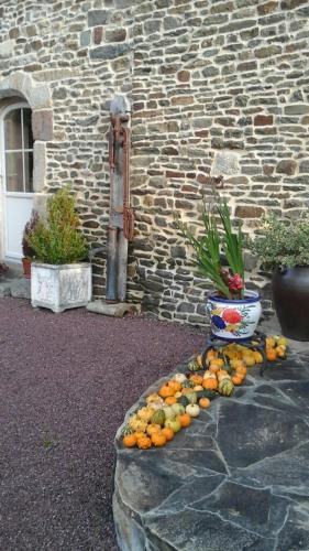 Les sources : Bed and Breakfast near Saint-Georges-de-Reintembault