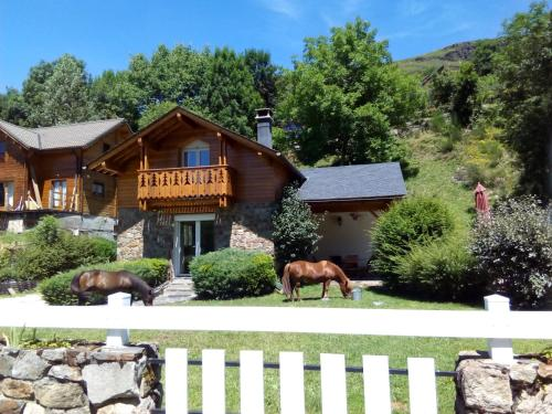 Les FEICHES et MARGUERITES : Guest accommodation near Montaillou
