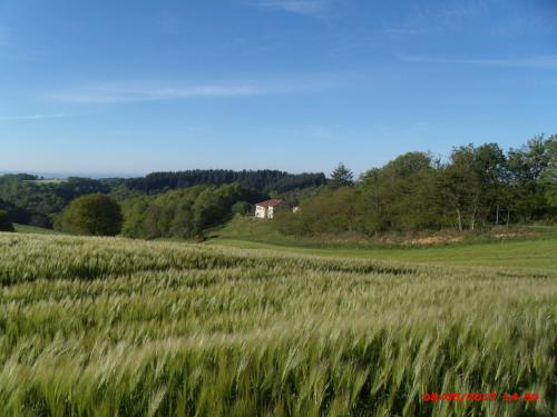 Gite du Mas duSuc : Guest accommodation near Viazac