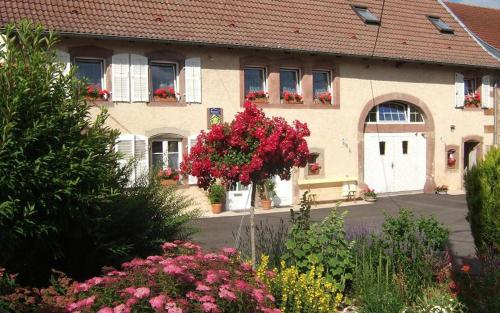 Chambre d'hôte au Grenier d'Abondance : Bed and Breakfast near Baerendorf