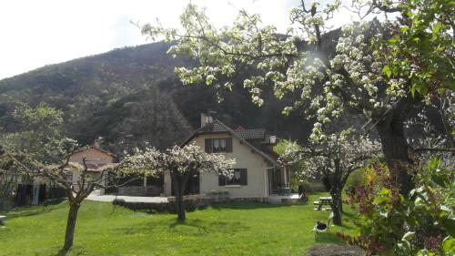 Au Vieux Tilleul : Bed and Breakfast near Chabestan