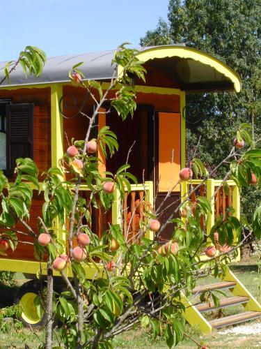 Les Roulottes du Sud-Ouest : Guest accommodation near Galapian