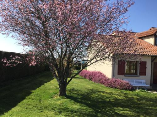Gite de Belle vue : Guest accommodation near Semur-en-Brionnais