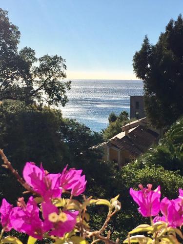 Villa Olivea : Guest accommodation near Rayol-Canadel-sur-Mer