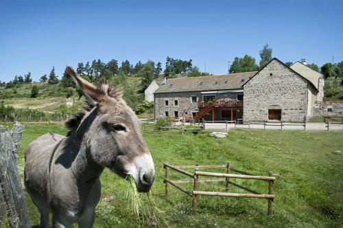 Les Granges de Bigose : Guest accommodation near Marchastel