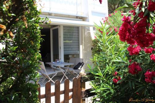 LA JONQUE - BEAU T2 PARKING WIFI GRANDE TERRASSE : Apartment near La Grande-Motte
