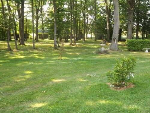 Les Gros Chenes : Bed and Breakfast near Dammarie-sur-Loing