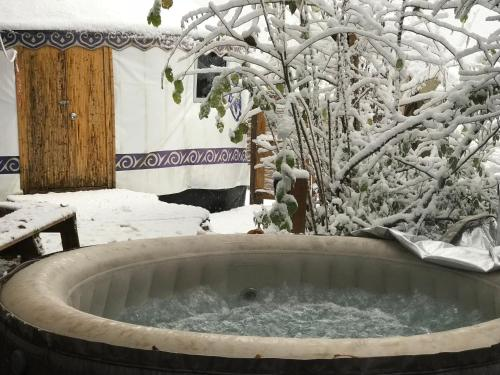 Yourtes de Barousse : Bed and Breakfast near Izaourt