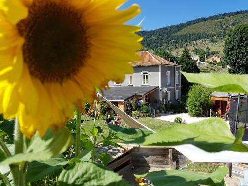 Le Silence du Midi : Guest accommodation near Belcaire