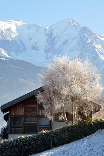 Chalet du MONT-BLANC : Guest accommodation near Passy