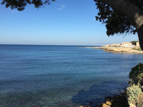 Studio bord de mer : Apartment near Sausset-les-Pins