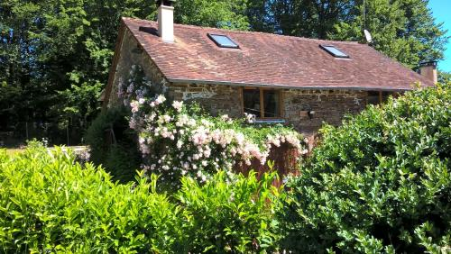 Le Moulin Neuf - Dordogne SW France : Guest accommodation near Pageas
