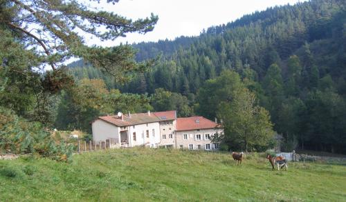 Moulin dans les bois : Guest accommodation near Saint-André-de-Chalencon