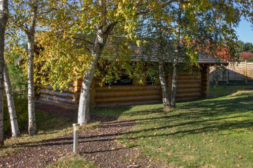 Rêves de Bois : Guest accommodation near Saint-Jacques-d'Ambur