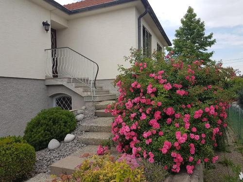Very nice cosy new appart : Apartment near Hangenbieten