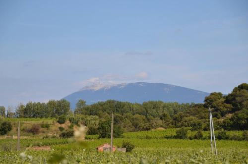 Vacances Vaison la Romaine : Guest accommodation near Roaix