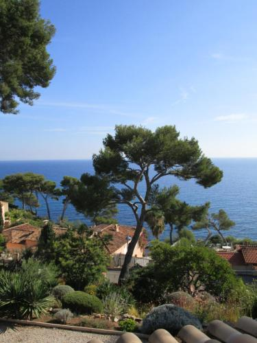 Les Bruyeres : Bed and Breakfast near Saint-Mandrier-sur-Mer