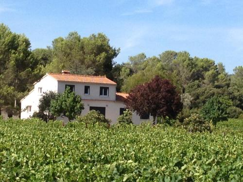 Maison Loubiere : Guest accommodation near Carnoules