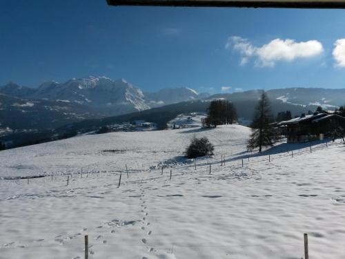 Rez de chaussée très calme vue Mont-Blanc : Apartment near Combloux