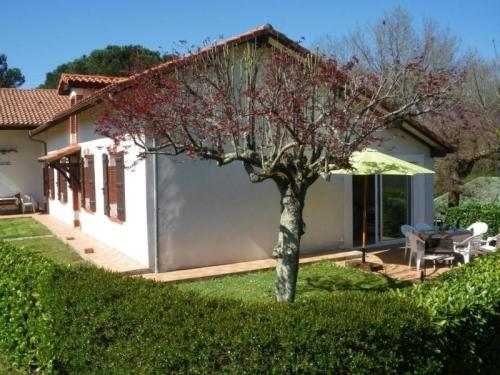 House Lanes : Guest accommodation near Montgaillard