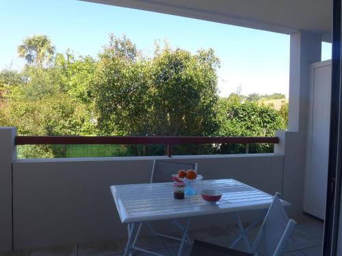 Apartment Selvia Quetia : Apartment near Ondres