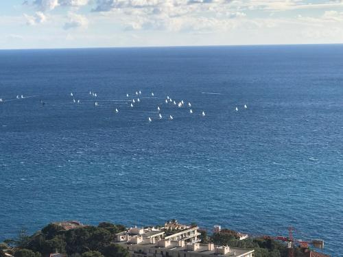 Cap d'Ail Monaco Vue mer exceptionnelle 2/3 pièces : Apartment near Èze