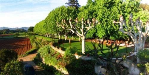 La Féraude : Bed and Breakfast near Saint-Savournin