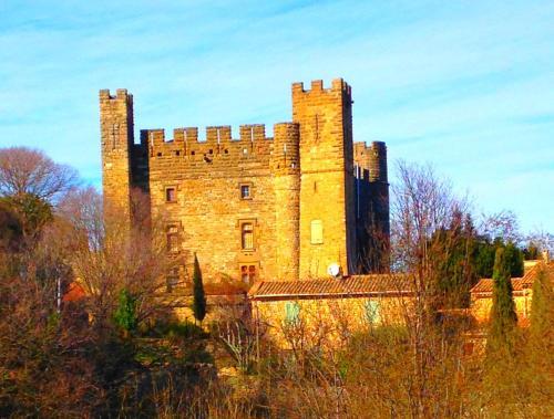 Chateau de Castelnau Valence : Guest accommodation near Garrigues-Sainte-Eulalie