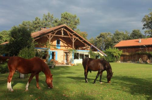 Tourtilla La Maison bleue : Guest accommodation near Bougue