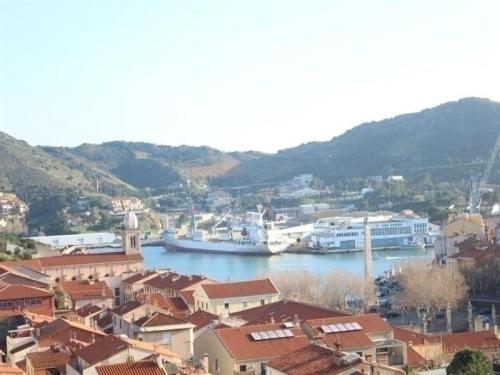 Apartment Appartement vue sur le port de port-vendres et la mer, avec place de parking et balcon pour 4 personnes : Apartment near Port-Vendres