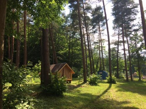 Camping Osenbach : Guest accommodation near Gundolsheim