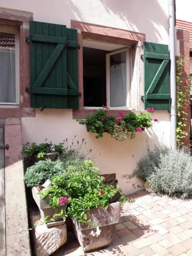 charmant petit appartement en Alsace : Apartment near Niedersoultzbach