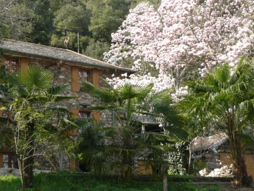 La Forge : Guest accommodation near Saint-Étienne-Vallée-Française