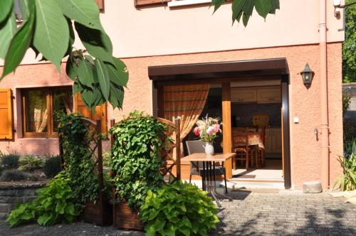 studio Fleurette : Apartment near Schwenheim