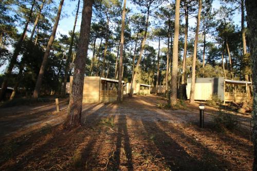 Airial du Seignanx Ondres : Guest accommodation near Labenne
