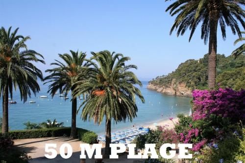 Clair de lune : Guest accommodation near Rayol-Canadel-sur-Mer