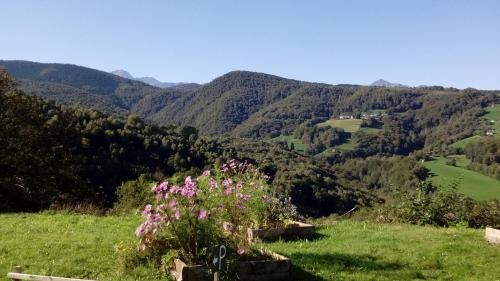 Les Mésanges : Bed and Breakfast near Bulan