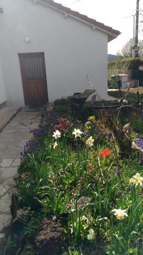Annexe du bois : Guest accommodation near Sauvessanges