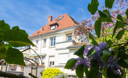Carpe Diem : Guest accommodation near Schwobsheim