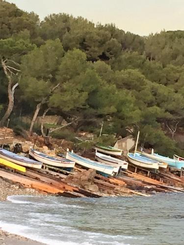 la maison du pêcheur : Guest accommodation near Saint-Mandrier-sur-Mer