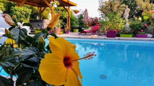 L'Hermine Occitane B&B : Guest accommodation near Poucharramet