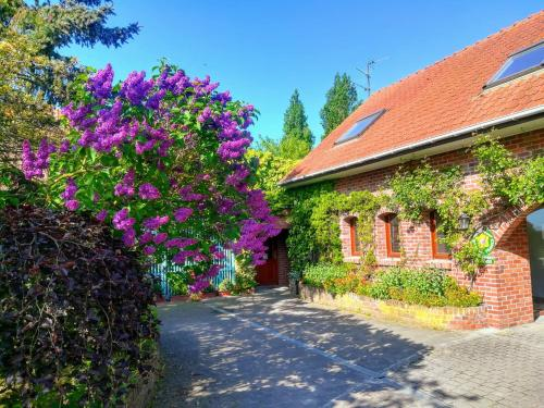 Pantgat Hof : Bed and Breakfast near Ledringhem