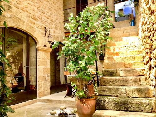 Un Patio en Luberon : Bed and Breakfast near Villelaure