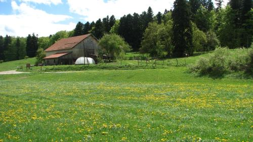 Gîte A Combray : Bed and Breakfast near Grandfontaine-sur-Creuse