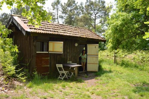 Cabane en forêt : Guest accommodation near Escource