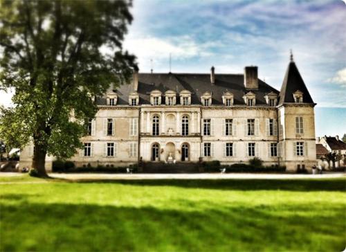 Appartement dans Château d'Arc-en-Barrois : Apartment near Giey-sur-Aujon