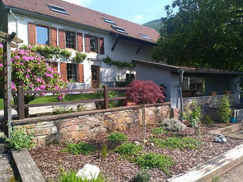 Ferme Terre des Plantes Bed & Breakfast : Bed and Breakfast near Bourg-sous-Châtelet