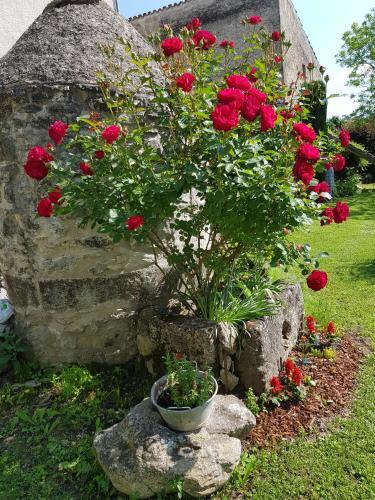 Grange Voutée avec jardin : Guest accommodation near Saint-Étienne-les-Orgues