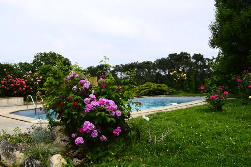 Maison de vacances avec piscine : Guest accommodation near Romestaing